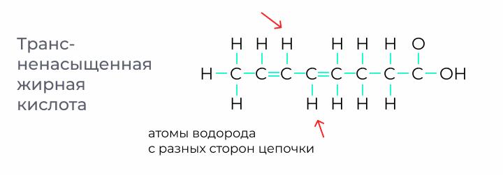 Пример структуры транс-ненасыщенной жирной кислоты